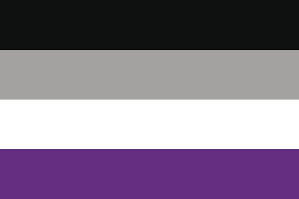 Asexual Demisexual pride flag lgbtq gay lesbian transgender queer trans pansexual intersex professional entrepreneurs online networking community outburo