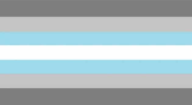 Demigender demiboys Pride Flag-lgbtq pride professional online community groups rate your emploer rating company reviews gay lesbian queer trans entrepreneurs outburo