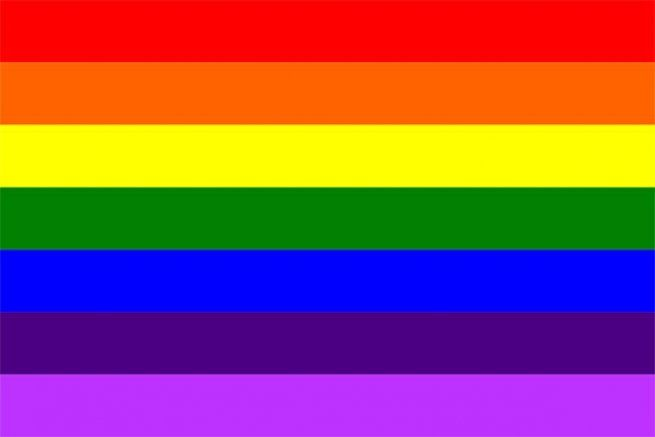 Gilbert Baker lgbtq pride flag adapted version-with-hot-pink-removed-due-to-fabric-unavailability professional entrepreneurs gay lesbian trans queer bisexual