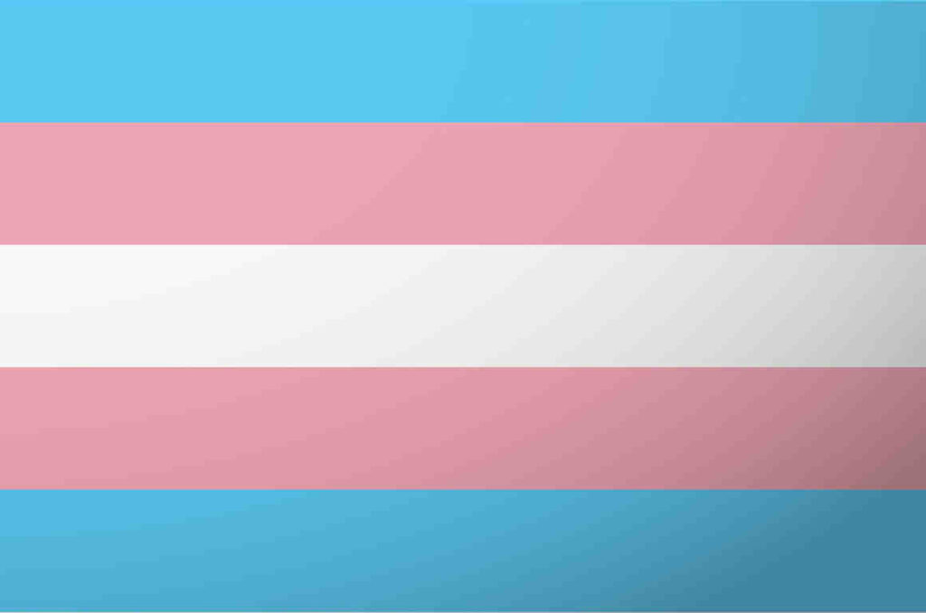 Transgender Pride Flag lgbtq professional online networking community rate employers ratings compay reviews groups outburo