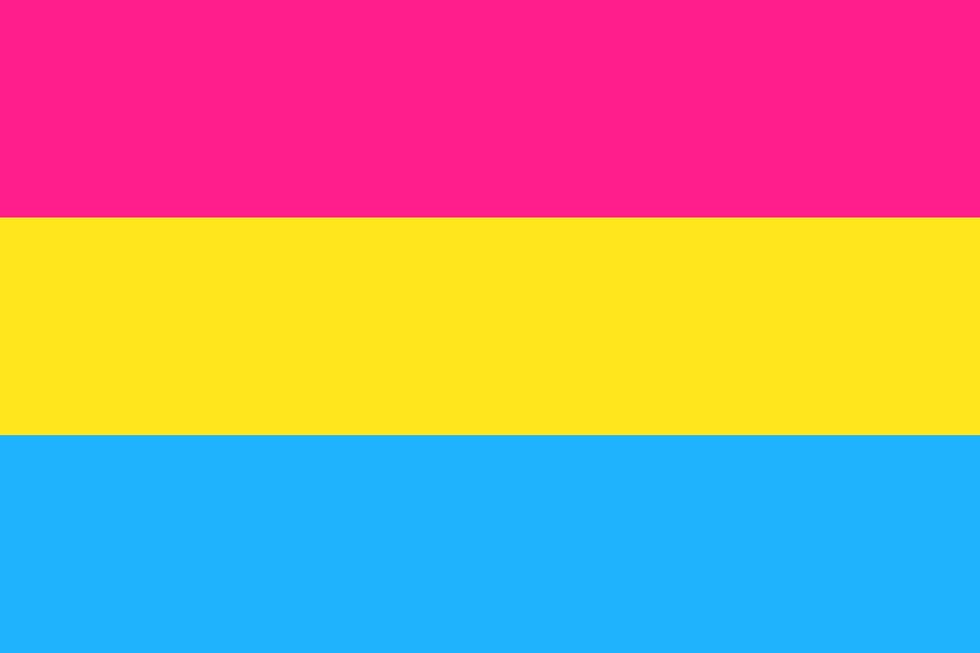 pansexual pride flag lgbtq gay lesbian trangender queer trans asexual intersex professional entrepreneursonline networking community outburo