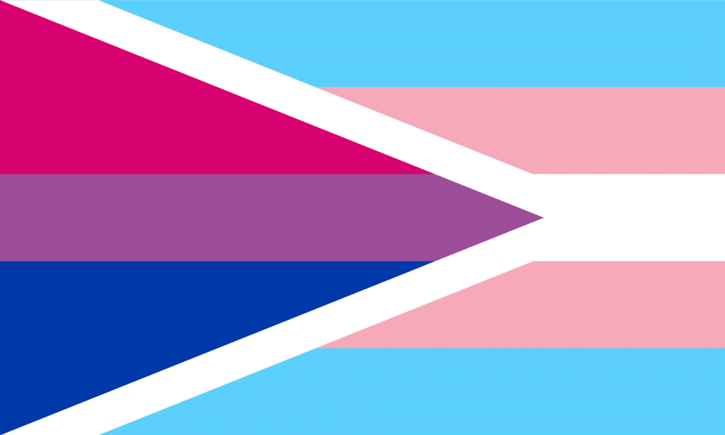 transgender bisexual pride flag 2 lgbtq professional online community groups rate your employer rating company reviews entrepreneurs business owners networking outburo